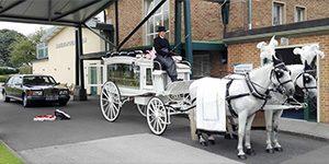 professional funeral directors