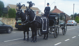 horse drawn hearse hire